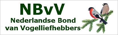 Nbvv-Banner